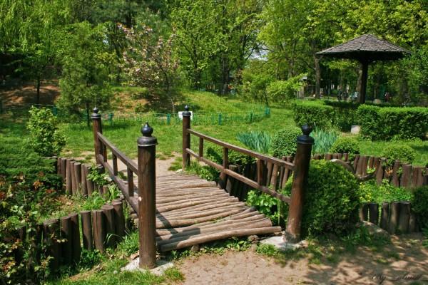 Parcul Herastrau Bucuresti - Gradina Japoneza
